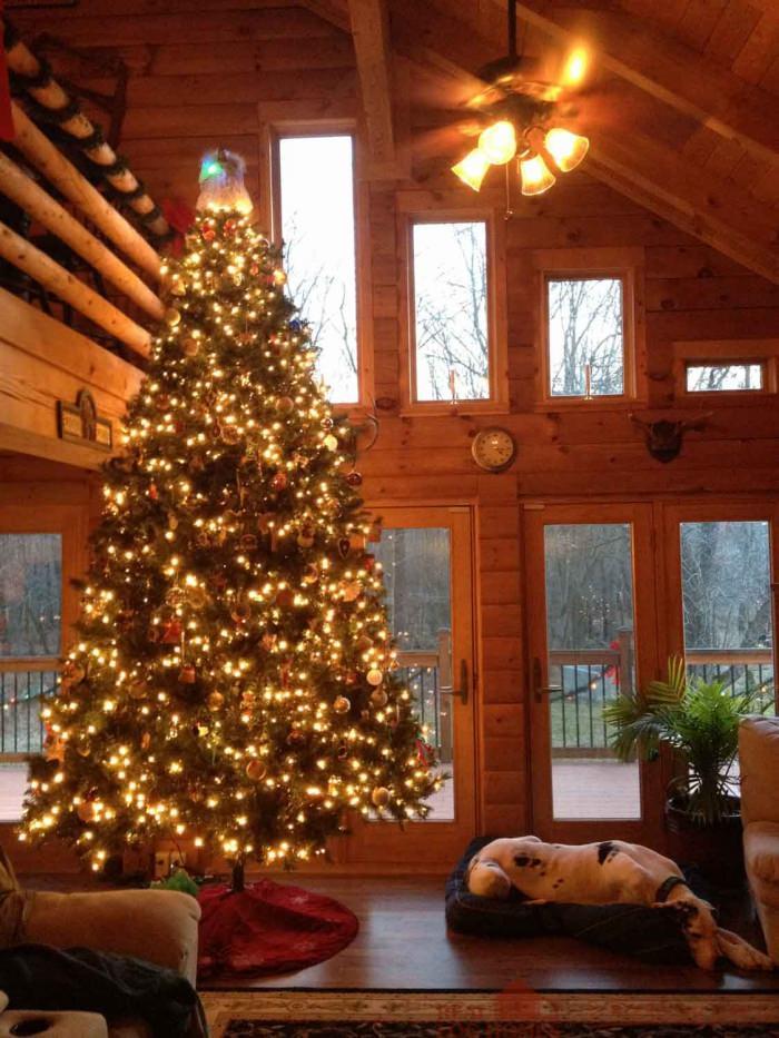 Cropseyville, NY Modified Catskill Log Home (#10673)